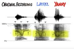 Laurel/Yanny Viral Debate Explained By Scientific Research