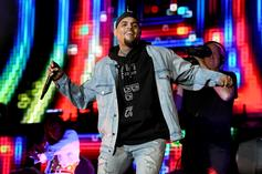 Chris Brown's Ex Moves On To Megan Thee Stallion After He Fathers Another Child