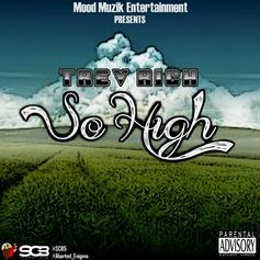 Trev Rich - So High