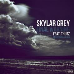 Skylar Grey - Final Warning (MisterMike Remix) Feat. Thurz