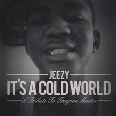 Jeezy - It's A Cold World (Trayvon Tribute)