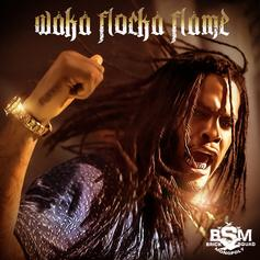 Waka Flocka - Turn Down For What (Remix)