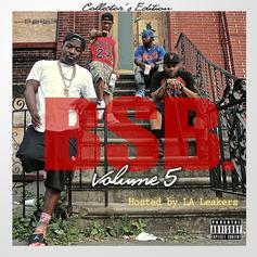 Troy Ave - Troy Ave Presents BSB Vol. 5