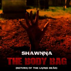 Shawnna - The Body Bag (Freestyle)