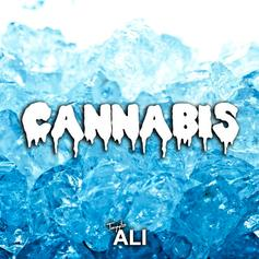 Tayyib Ali - Cannabis  (Prod. By Clams Casino)