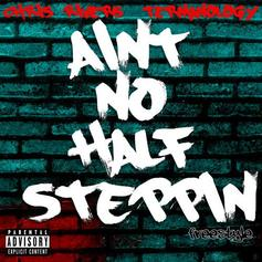 Chris Rivers - Ain't No Half Steppin Feat. Termanology