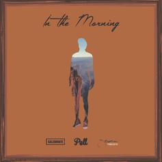 Pell, Caleborate & Stephen - In The Morning