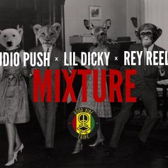 Audio Push - Mixture Feat. Lil Dicky