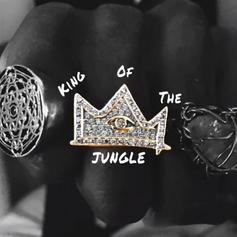 """Joey Bada$$ Reps Brooklyn To The Fullest On New Song """"King Of The Jungle"""""""