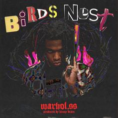 "Warhol.SS Releases New Song ""Birds Nest"""