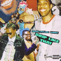"Reese LaFlare Calls On Gunna For Upgraded Version Of ""Drip Like That"""