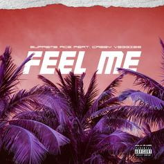 """Supreme Ace Taps Casey Veggies For New Track """"Feel Me"""""""
