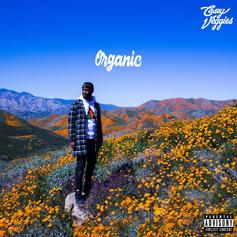 """Casey Veggies Pours One Out For Mac Miller & Nipsey Hussle On """"Organic"""""""