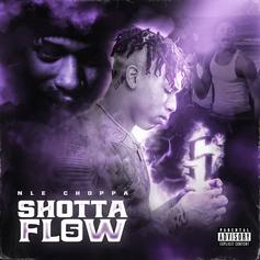"NLE Choppa Releases New Single ""Shotta Flow 5"""
