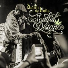 """Devin The Dude Engages In """"Soulful Distance"""""""