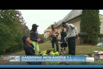 "T.I. ""Gardening On CNN"" Video"