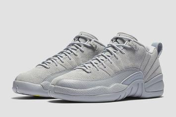 """Wolf Grey"" Air Jordan 12 Low Official Images Have Arrived"