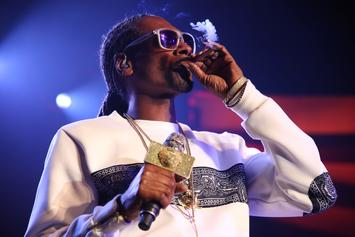 "Snoop Dogg Shares Throwback ""Neva Left"" Album Cover"