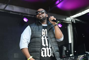 "Raekwon Announces ""The Wild"" Tour"