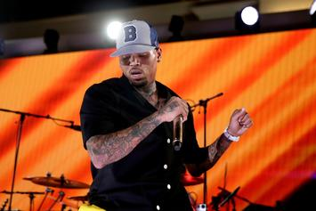 Chris Brown Goes After U.S. Government Over Puerto Rico Relief Negligence