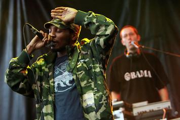 Del The Funky Homosapien Has Been Officially Released From The Hosptial