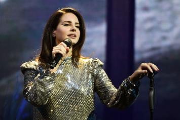 Lana Del Rey Postpones Israel Performance Following Internet Backlash