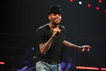 Chris Brown Believes Increasing Child Support Will Spoil Royalty: Report