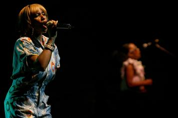 Santigold's Los Angeles Home Catches Fire: 25 Firefighters Answer The Call