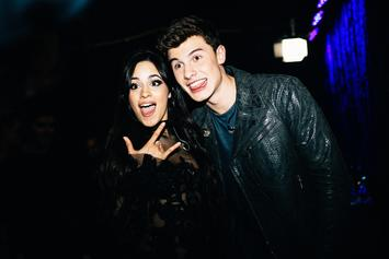 Camila Cabello & Shawn Mendes Tease Upcoming Single With Intimate Clip