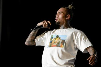 "Chris Brown Shares A ""Last"" Message Over ""Nice Hair"" Controversy"