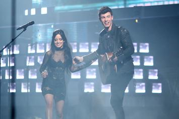 "Camila Cabello & Shawn Mendes Began As ""Summer Fling"" Before ""Committed"" Relationship"