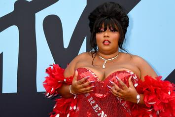 """Lizzo Apologizes For Shaming Postmates Food Thief: I'll """"Be More Responsible"""""""