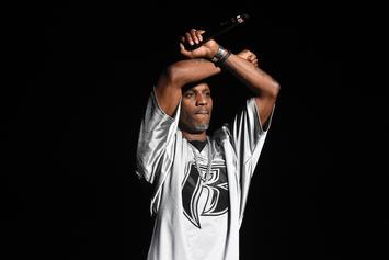 DMX Checked Himself Into Rehab To Avoid Relapsing: Report