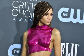 Zendaya Won The Critics' Choice Red Carpet; Twitter Agrees