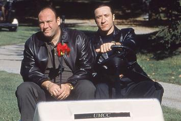 """""""The Sopranos"""" Visual Dictionary Defines The Show's Slang Alongside Classic Clips"""