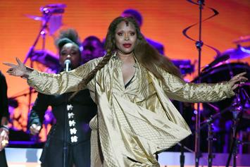 """Erykah Badu Urges Protesters To """"Fall Back"""": """"We Are Out Gunned"""""""