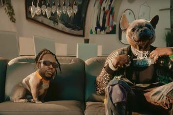 """2 Chainz Switches Roles With His Dog In """"Grey Area"""" Video"""