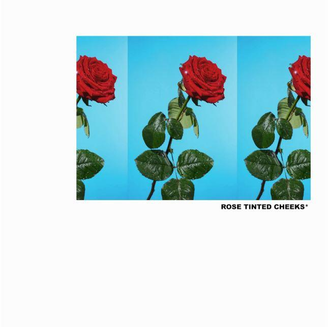 Tyler, The Creator – Rose Tinted Cheeks Mp3 Download